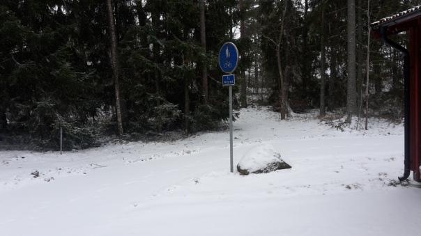 Snöbild